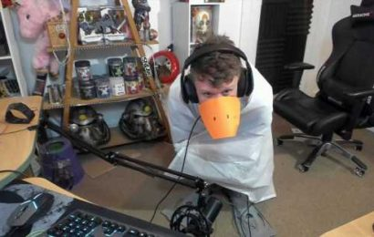 Streamer creates wearable 'goose' suit to play Untitled Goose Game