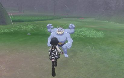 An ode to the tempting spawns of Pokémon Sword and Shield's Wild Area