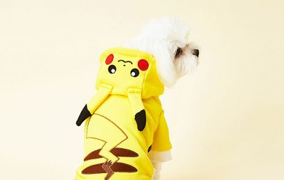 Here's a cute line of Pokémon clothes, for dogs