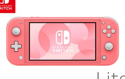 Nintendo Adds New Switch Lite Color