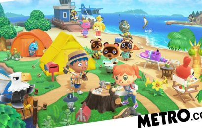 Animal Crossing: New Horizons review – life in paradise