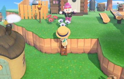 Animal Crossing: New Horizons — How To Get The Ladder