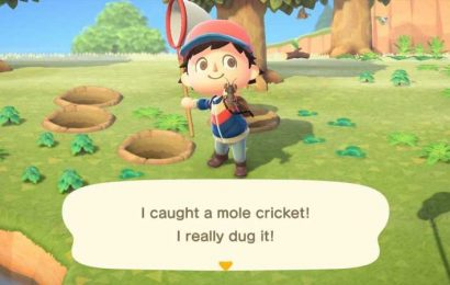 Animal Crossing: New Horizons – How To Catch The Annoying Mole Cricket