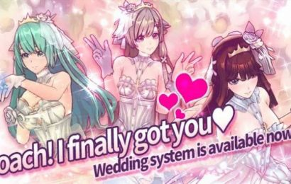 If You've Ever Wanted To Marry A Scantily Clad Anime Girl, Here's Your Chance