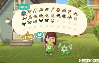 Animal Crossing: New Horizons — How To Expand Inventory Space