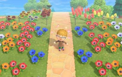 Animal Crossing: New Horizons flowers and hybrids guide