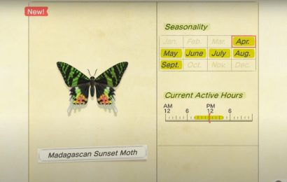 Animal Crossing: New Horizons – How To Catch The Madagascan Sunset Moth
