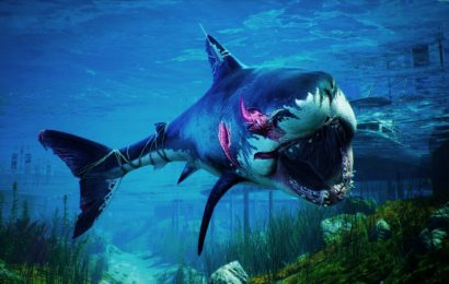 Take A Video Tour Of Maneater, The Shark RPG