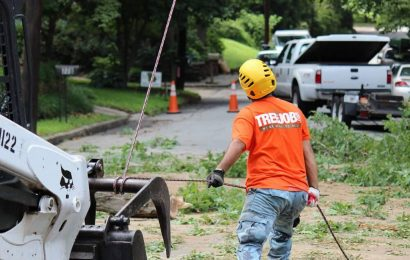 5 Latest Innovations in Tree Service Technology in 2020