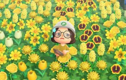 This Animal Crossing fan-made terraformer is much better than the real thing