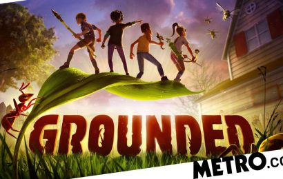 Grounded early access review – shrunken survivalism
