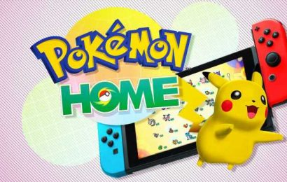 Switch Pokemon Home Update Fixes Isle Of Armor Pokedex Bug