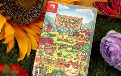 Stardew Valley Switch Physical Edition Available For Pre-Order At Best Buy