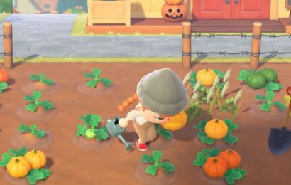 How To Get Pumpkins In Animal Crossing: New Horizons