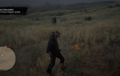 Red Dead Online – Where To Find Prairie Poppies