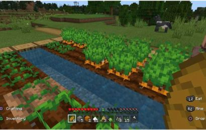I Tried To Survive As A Vegan In Minecraft And Now I'm Safer Than Ever