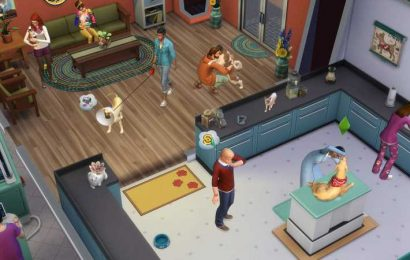 The Sims 4 Cats & Dogs: Guide To Running A Successful Vet Clinic