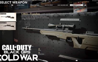 CoD: Best Class Setups For The LW3 Tundra In Black Ops Cold War