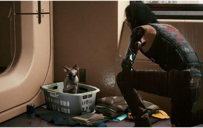 Cyberpunk 2077: Everywhere You Can Pet A Cat