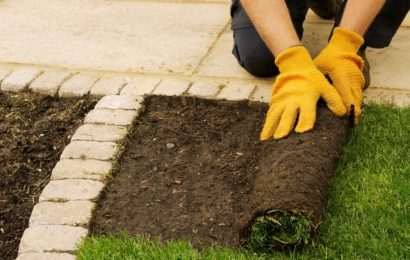 7 Benefits of Lawn Grass Installation and Sod Installation
