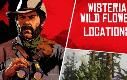 Red Dead Online Wisteria: Collector Map locations for Madam Nazar collection