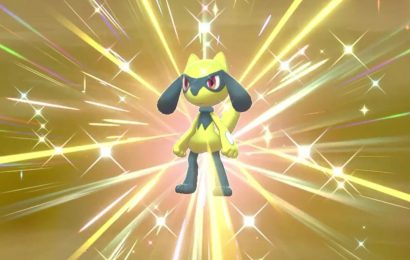 2000 Eggs Later, This Pokemon Sword And Shield Player Finally Has A Shiny Riolu
