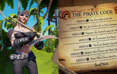 Sea Of Thieves: How To Report Players