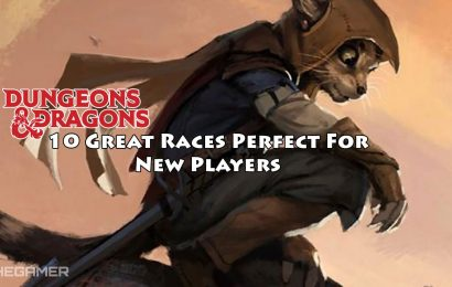 Dungeons & Dragons: Great Races Perfect For New Players