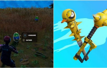 Fortnite: How To Forage Bouncy Eggs And Get The Tactical Quaxes Pickaxe