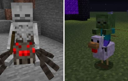 Minecraft: Everything You Need To Know About Jockeys