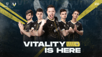 Team Vitality to launch fan tokens on Socios.com – Esports Insider