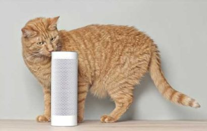 How much smarter can a smart speaker get?