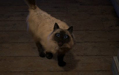 Square Enix assures us that the cute cat from Forspoken isn't starving